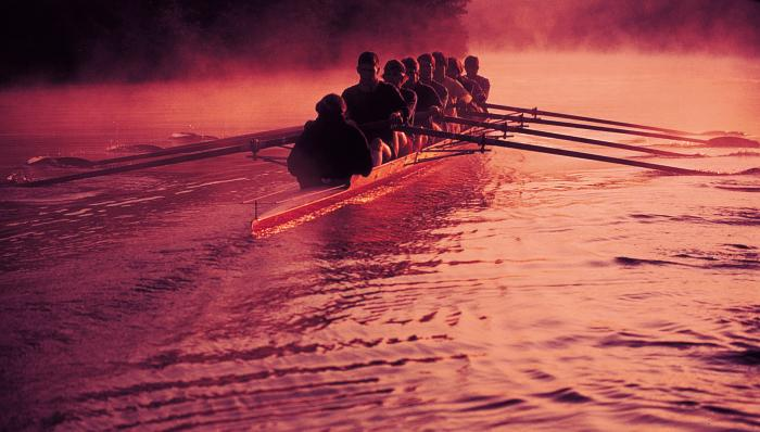 Successories Rowers Motivational Posters