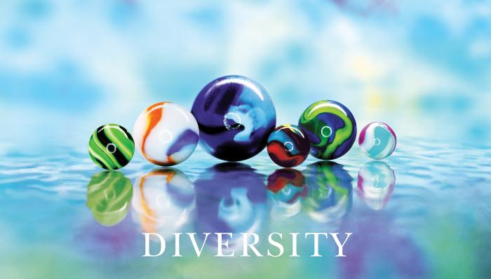 Diversity Marbles with Text Motivational Posters