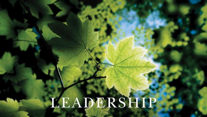 Leadership Leaf with Text Motivational Posters