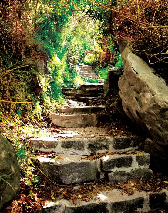 Lead The Way Stone Path Motivational Posters