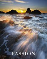 Framed Prints & Gifts - Passion Sea Spray