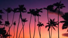 Framed Prints & Gifts - Purple Hue Sunset