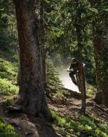 Mountain Biker's Journey