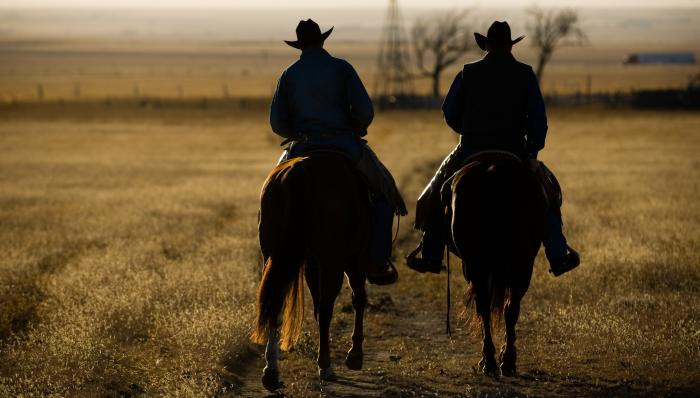 Cowboy Partners Motivational Posters