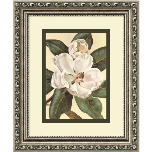 Waltraud Fuchs Von Schwarzbek Afternoon Magnolia Office Art