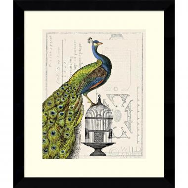 Sue Schlabach Peacock Birdcage I Office Art
