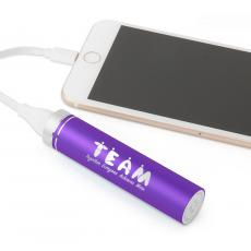 Holiday Delivery - Teamwork People Power Bank