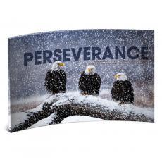 Acrylic Desktop Prints - Perseverance Eagles Curved Desktop Acrylic