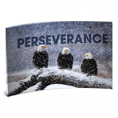 Perseverance Eagles Curved Desktop Acrylic