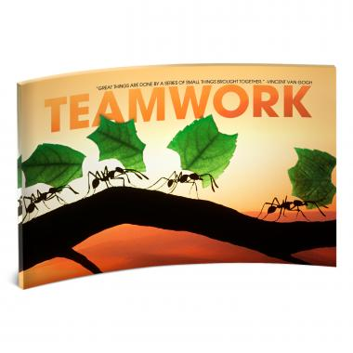 Teamwork Ants Curved Desktop Acrylic