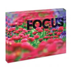 New Products - Focus Flowers Infinity Edge Acrylic Desktop