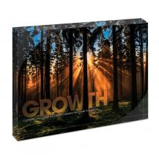 New Products - Growth Forest Infinity Edge Acrylic Desktop