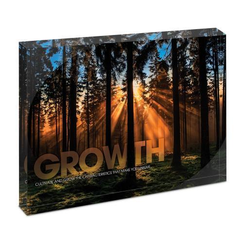 Growth Forest Infinity Edge Acrylic Desktop