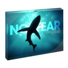 Modern Motivation - No Fear Shark Infinity Edge Acrylic Desktop