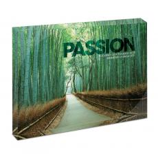 All Posters & Art - Passion Bamboo Path Infinity Edge Acrylic Desktop