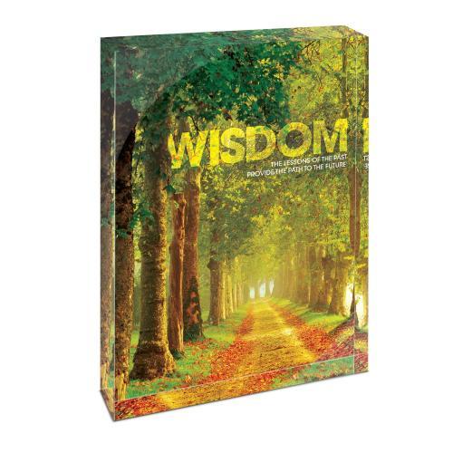 Wisdom Path Infinity Edge Acrylic Desktop