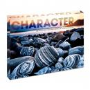Character Beach Infinity Edge Acrylic Desktop
