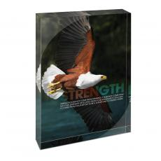 All Posters & Art - Strength Eagle Infinity Edge Acrylic Desktop