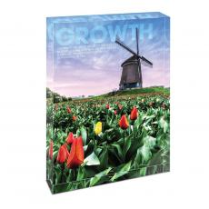 Modern Motivation - Growth Windmill Infinity Edge Acrylic Desktop