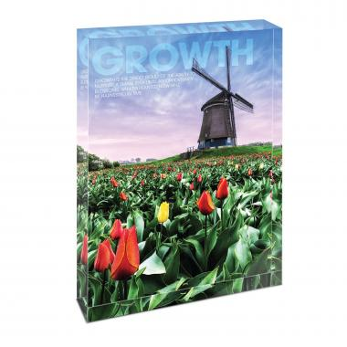 Growth Windmill Infinity Edge Acrylic Desktop