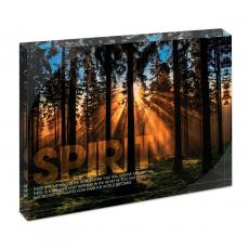 Modern Motivation - Spirit Forest Infinity Edge Acrylic Desktop