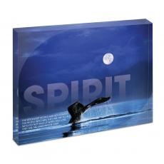 All Posters & Art - Spirit Whale Infinity Edge Acrylic Desktop