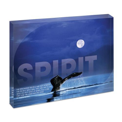 Spirit Whale Infinity Edge Acrylic Desktop