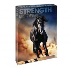 All Posters & Art - Strength Mustang Infinity Edge Acrylic Desktop