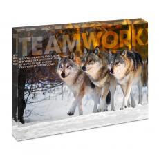 Animal Posters - Teamwork Wolves Infinity Edge Acrylic Desktop