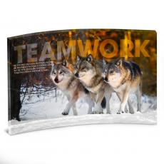 Acrylic Desktop Prints - Teamwork Wolves Curved Desktop Acrylic