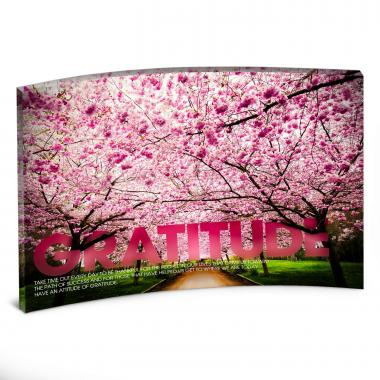 Gratitude Cherry Blossoms Curved Desktop Acrylic