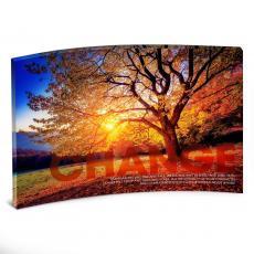 Acrylic Desktop Prints - Change Tree Curved Desktop Acrylic