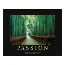 Attitude Posters - Passion Bamboo Path Motivational Poster