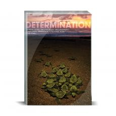 New Products - Determination Turtles Desktop Print