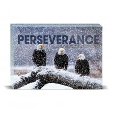 Modern Motivation - Perseverance Eagles Desktop Print