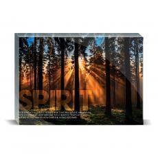 New Products - Spirit Forest Desktop Print