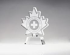 Canada Custom Award