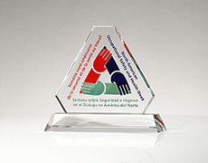 Occupational Therapy Custom Award