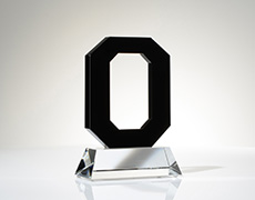 Ohio State Custom Award