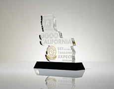 Team California Large Custom Award