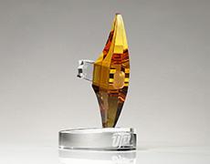 UTEP Custom Award