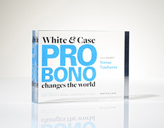 White and Case Custom Award