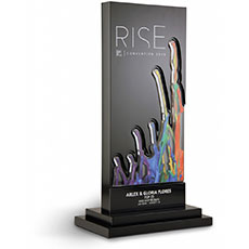 World Financial Group Rise Award