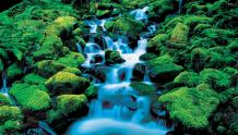 Framed Prints & Gifts - Service Waterfall