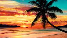 Framed Prints & Gifts - Sunset Beach