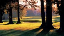 Framed Prints & Gifts - Focus Golf