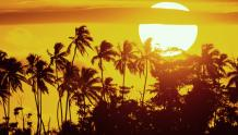 Framed Prints & Gifts - Tropical Sunset