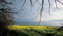 Framed Prints & Gifts - View from The Mount Of Beatitudes