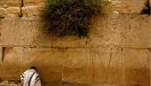 Framed Prints & Gifts - Jerusalem Western Wall Prayer