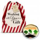 Teamwork Ants Positive Outlook Paperweight Holiday Gift Set